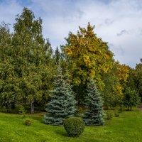 Скоро осень :: Константин Вавшко