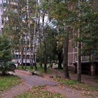 Осень спешит в город :: Елена Семигина