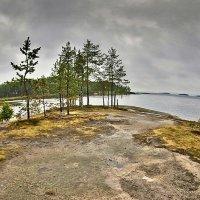 Каменные берега Онего :: Валерий Талашов