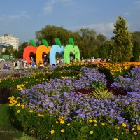 Фестиваль яблок «Aлма Fest-2016» в Алматы. :: Anna Gornostayeva