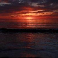 Закат на Финском заливе :: Денис Алексеенков