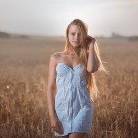 В поле :: Стас Кашин
