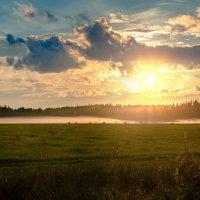 На закате :: Владимир Миронов
