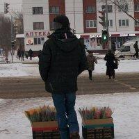 Первые признаки весны) :: Галина Бобкина