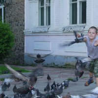 Лети, голубка! :: Юлия Руденко