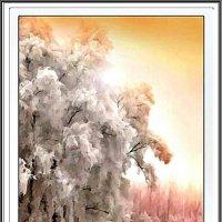 В ожидании зимы :: Лидия (naum.lidiya)