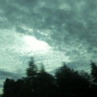 """""""Распахнутые ветра снова в наши края стучатся..."""" :: veilins veilins"""