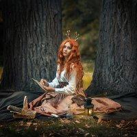 Под сенью стырых дубов. :: Виктор Седов