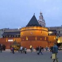 Круглая башня :: Вера Щукина