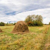 Осень на покосе... :: игорь козельцев