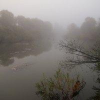 Мост скрылся в пелене тумана :: Нина северянка