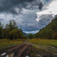 Дорога домой :: Андрей Поляков
