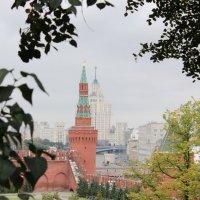 Кремлевские пейзажи :: Natalia Almosti