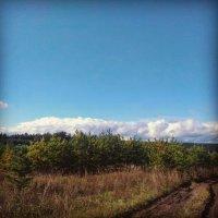 Осень! как много в этом звуке! :: Оксана Романова