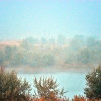 Озеро,туман. :: Юрий Фёдоров