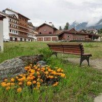 В Олимпийской деревне :: Алексей Меринов