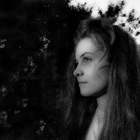 Мы на Землю приходим, чтобы точки расставить ? :: Ирина Данилова