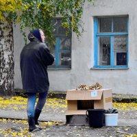 Осенние,последние. :: A. SMIRNOV