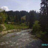 Горная   река   в   Ворохте :: Андрей  Васильевич Коляскин