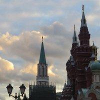 На фоне неба :: Вера Щукина