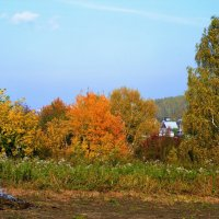 Осенние краски! :: Маргарита Кириллова