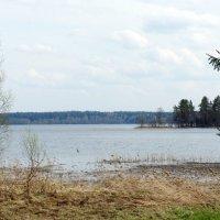 Валдайское озеро :: Елена Павлова (Смолова)