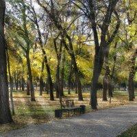 Осенний парк... :: Михаил Болдырев