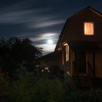 Лунная ночь :: Ирина Климова
