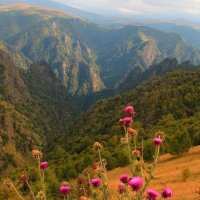 Осенние краски Приэльбрусья :: Vladimir 070549
