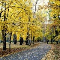октябрь :: navalon M