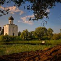 Церковь Покрова на Нерли. :: Alex Urbo