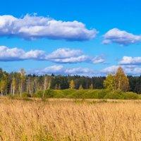 Из лета в осень. :: Владимир Лазарев