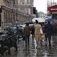 В Париже тоже дождь... :: igor