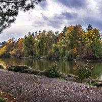 Осень в Гончарке :: Геннадий Клевцов