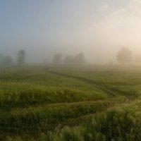 Рассвет в лугах :: Михаил Корнилов