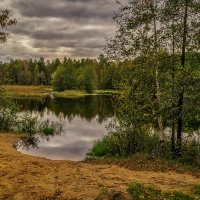 Лесное озеро, осень :: Андрей Дворников