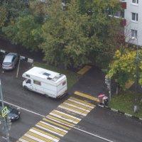 """Зебра"" украшает пешеходный переход :: Валерий"