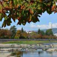 Осень приходит и на Черное море в Сочи. Река Сочи. :: Михаил Поскотинов