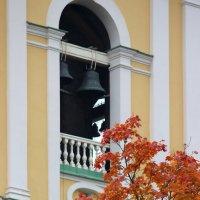Осень на Васильевском :: Вера Моисеева