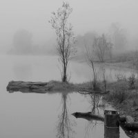 Туман :: Радмир Арсеньев