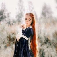 В лучах солнца :: Irina Voinkova