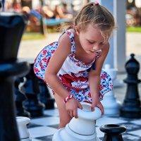 Шахматная композиция :: Татьяна Сафронова