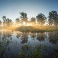 Майские рассветы :: Михаил Корнилов
