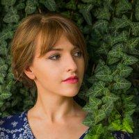 Новые мечты :: Nadezhda Slepicheva