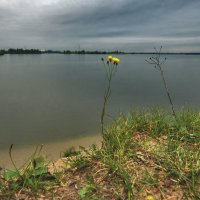 Картинки осени :: sergej-smv