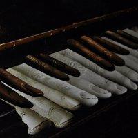 Необычные клавиши :: Александр Аполонов