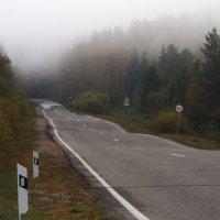 Через туман и по таким дорогам... :: Александр Попов