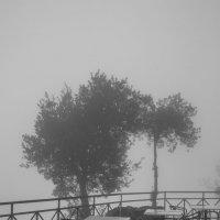Утро в Сан-Марино :: Gotardo Ro