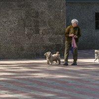 трое :: Сергей Волков
