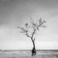 Одиночество :: Катерина Губа